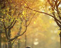 母爱,是秋天那永不凋谢的温暖
