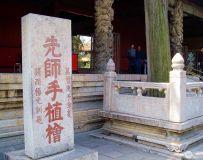 曲阜孔庙--先师栽植的桧树