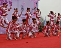 桃花节开幕式2