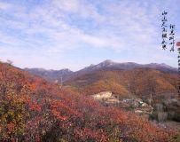 山远天高烟水寒,相思枫叶丹