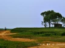 一个人的村庄