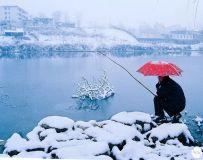 光影中国网2019年第12期月赛主题:冬韵