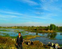 白河牧羊人