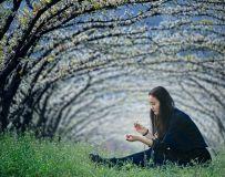 春暖花开季