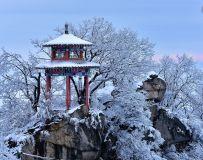 光影中国网2021年第1期月赛:冬之韵