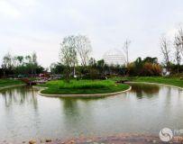 南阳世界月季大观园采撷(29)——东湖