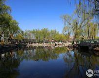 北京龙潭西湖风光(7)