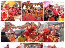 龙腾狮舞欢乐年(组照)