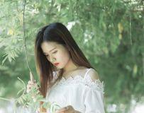 醉花荫------薰衣草园作业